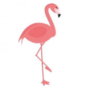 Flamingo aroma